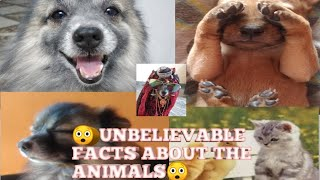 😲😲 UNBELIEVABLE FACTS ABOUT THE ANIMALS 😲😲