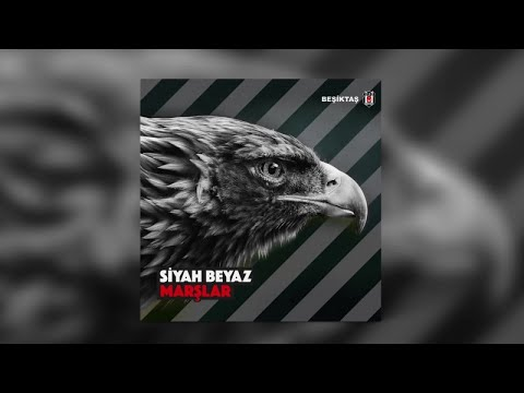 Birol Can - Sen Benim Her Gece Efkarım - Official Audio - Esen Digital