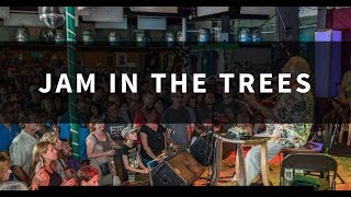 Jam In The Trees All-Star Late Night Jam @ Pisgah Brewing Co. 8-25-2018