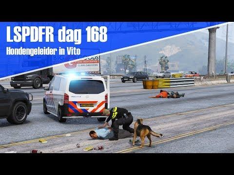 GTA 5 lspdfr dag 168 - Hondengeleider in de Vito!