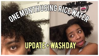 One Month Rice Water Update!
