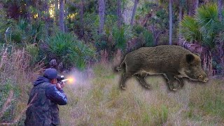 "Wild Boar ""Spot n' Stalk"" **6.5 Creedmoor** {Catch Clean Cook} Backstrap on the Griddle"