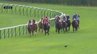 Vidéo de la course PMU QATAR ARABIAN TROPHY DES JUMENTS
