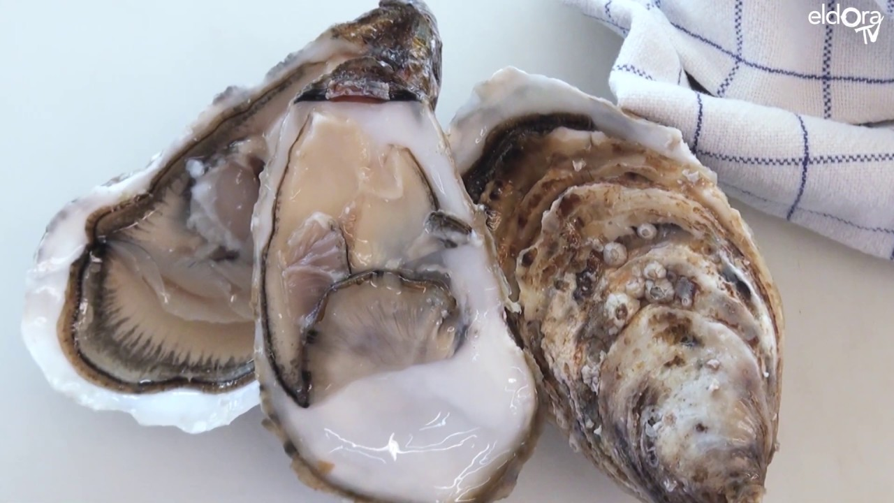 Ouvrir les huîtres comme un Chef
