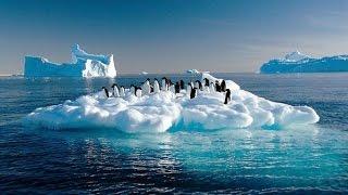 Khám phá Nam Cực - Phần 1