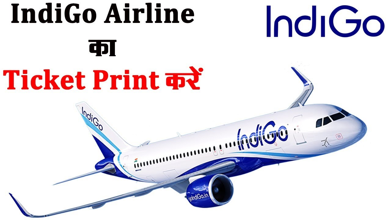 segmentation of indigo airlines I have heard that indigo sometimes indigo airlines watch as far as i know have the best reputation of punctuality in the low cost airline segment.
