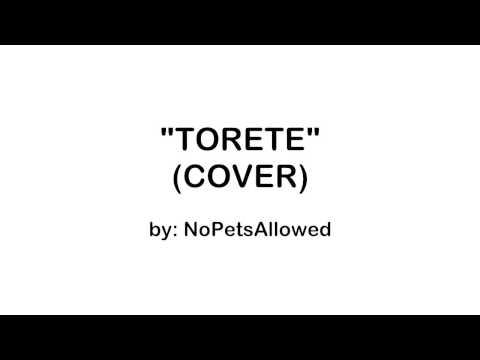 NoPetsAllowed - Torete (Cover) | Lyric Video HD