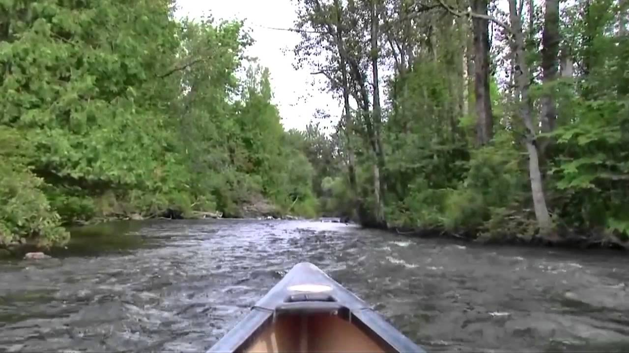 Sturgeon River Michigan Paddle