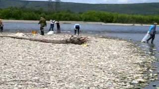 Рыбалка на Оле в июле 2009. Колыма - Магадан.(, 2010-11-04T19:21:05.000Z)