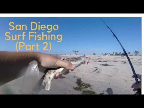 San Diego Surf Fishing (Part 2)