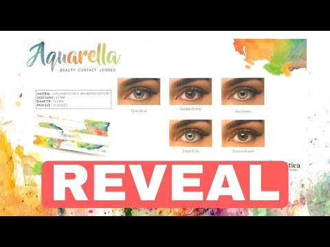 909790406 NEW SOLOTICA COLLECTION - AQUARELLA DAILY - YouTube
