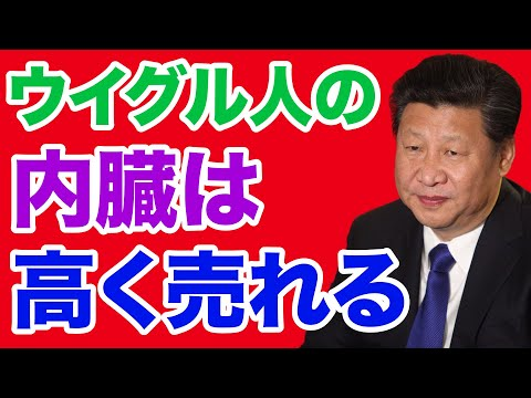 #433 【在日ウイグル人の証言】中国「ウイグル人の内臓は高く売れる」