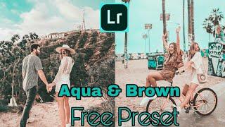 Free Aqua & Brown Preset For Lightroom Mobile | Aqua & Brown Preset | Free Lightroom cc Preset