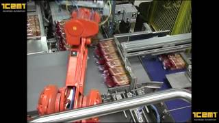ICEMI - Encajado pan de molde / Bread automated box