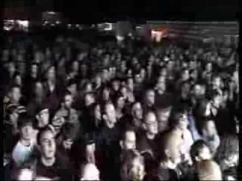 louis bertignac live d-viation nov 2011