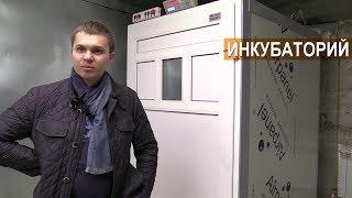 ИНКУБАТОРЫ  в КФХ Кирилла Жданова.