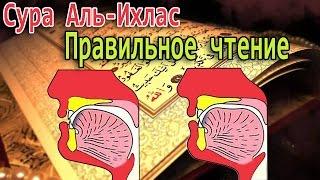 Правильное чтение Суры #112 Аль-Ихлас