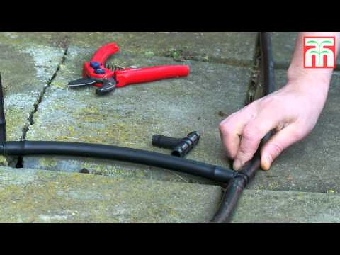 How to install an automated drip irrigation system video with Thompson & Morgan