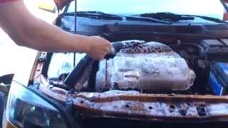 Cleaning the engine with meguiars engine cleaner and engine dressing