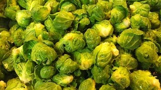 Harvesting Brussels Sprouts 02/17/2014