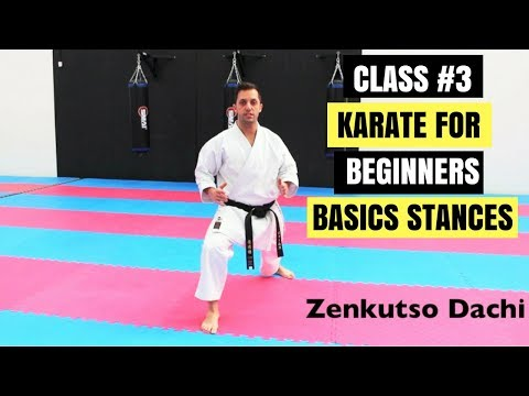 Martial Arts for Beginners – Lesson 3  Karate Kid Stances