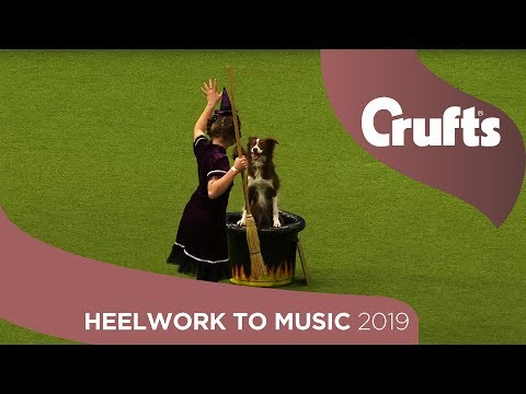 Witchcraft At Crufts Leaves Dancing Dog Spellbound | Crufts 2019