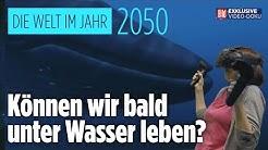 Unter Wasser leben und Fahrten im U-Boot | So sieht die Welt im Jahr 2050 aus