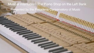 Musical Interludes | The Piano Shop on the Left Bank