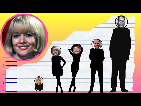How Tall Is Judy Geeson?  Height Comparison!