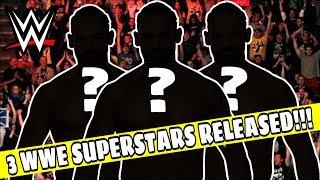 3 WWE SUPERSTARS RELEASED!!! WWE BREAKING NEWS