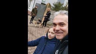CZ2-Karma dla Piesków zamiast Petard-Wzruszająca Wyprawa Szabełków-Schronisko  Przylasek-U Piesków