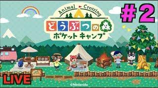 【どうぶつの森 ポケットキャンプ】#2 やりこみが足りない!【youtubelive】 thumbnail