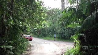 Adjuntas, Puerto Rico-mountains Walter Rivera Santos home town
