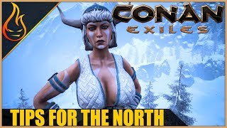 How To Deal With The Cold North Conan Exiles 2018 Beginner Tips