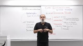 Direito Constitucional | Direitos Individuais | Extradição | Daniel Sena