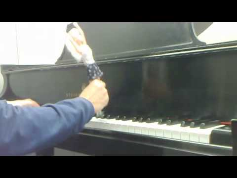 Playing Single Ladies with a single lady (Barbie) Beyonce Piano Cover by the Napkin Holder
