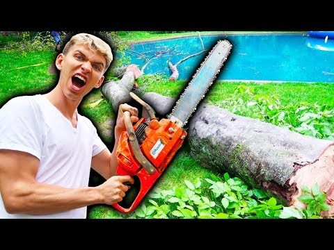 Thumbnail: WE CUT IT DOWN!!