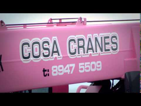 COSA CRANES SUPPORT BREAST CANCER RESEARCH