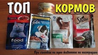видео Корм для кошек Sheba (Шеба): обзор, отзывы и цены