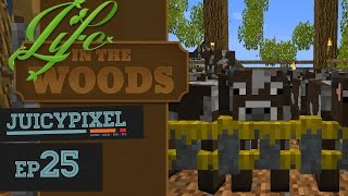 The Price Of Leather! - Life In The Woods - #25
