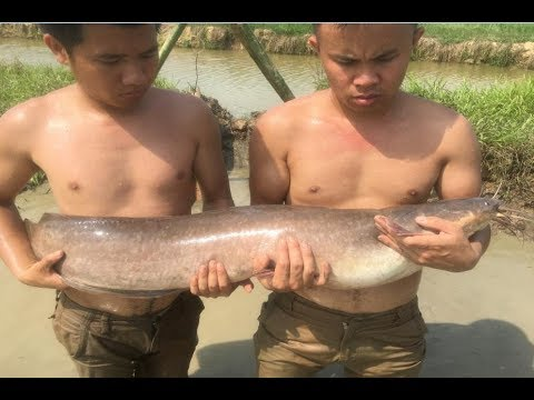 Primitive Technology with Survival Skills looking fish for food and food storage
