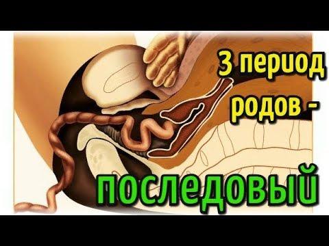 3 период родов - последовый период!