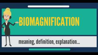 What is BIOMAGNIFICATION? What does BIOMAGNIFICATION mean? BIOMAGNIFICATION meaning