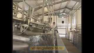 Зерненый творог - репортаж программы Галилео