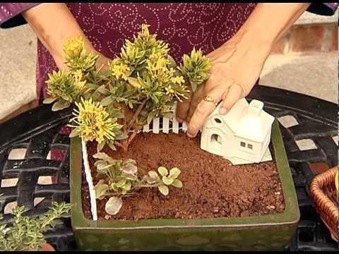 Miniature Garden Youtube