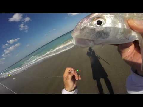 How To Catch Tons Of Whiting Surf Fishing Florida Plus Free Online Surf Fishing Course