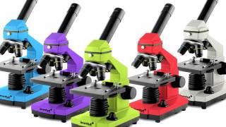 Как выбрать микроскоп: видео для любителей микромира