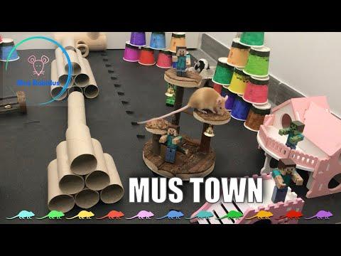 Mus Town - MUS RABIDUS 🐭