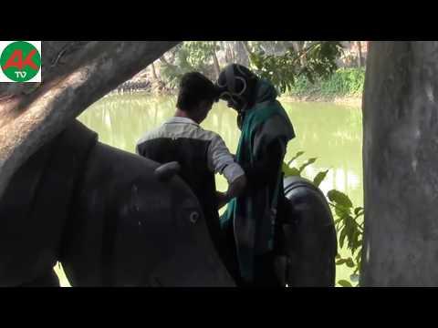 Joypurhat park pair pair Lover Couple
