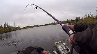 рыбалка на спининг . мечта рыбака .за 20 минут всего 3 холостых проводки)))без монтажа.